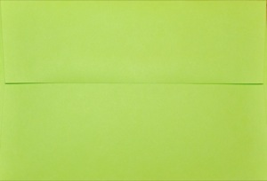 4x6 Photo Envelope: Lime
